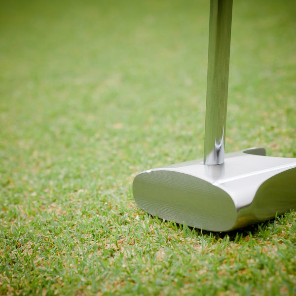 GP putter on the green